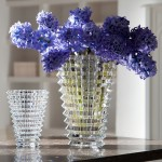 Baccarat - EYE VASE-OVAL, Small (Clear)